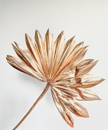 Golden Sun Palm