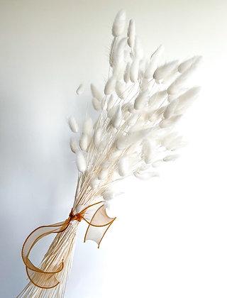 Bunny Tails - Snow