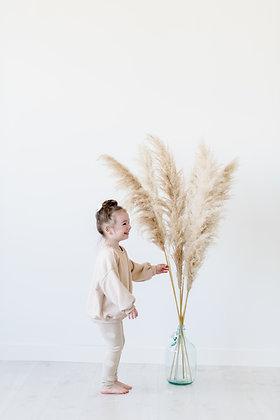 Luxe Pampas Grass