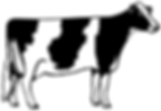beef-clipart-beef-cattle-5.png