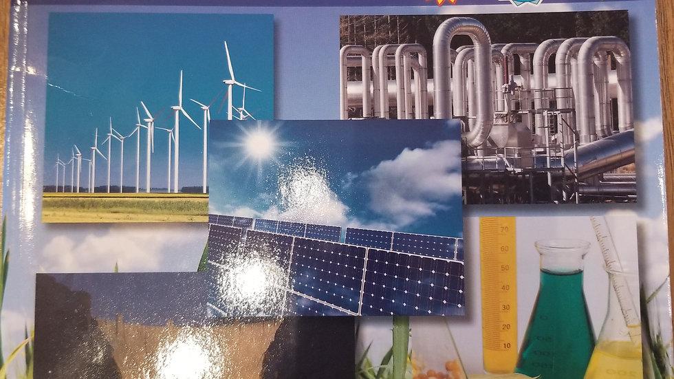 Using Stem to Investigate Issues Alternative Energy