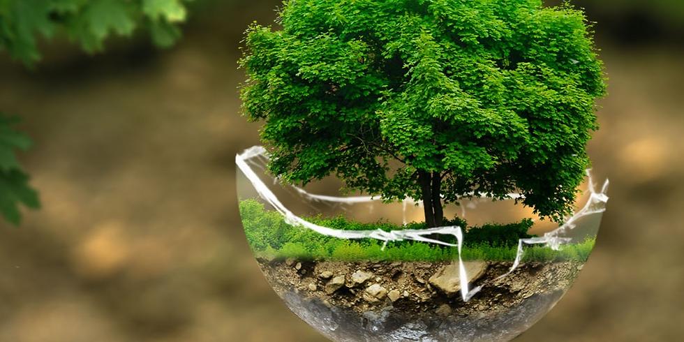 """Primer encuentro gratuito """"Recuperando la intuición ecológica"""""""