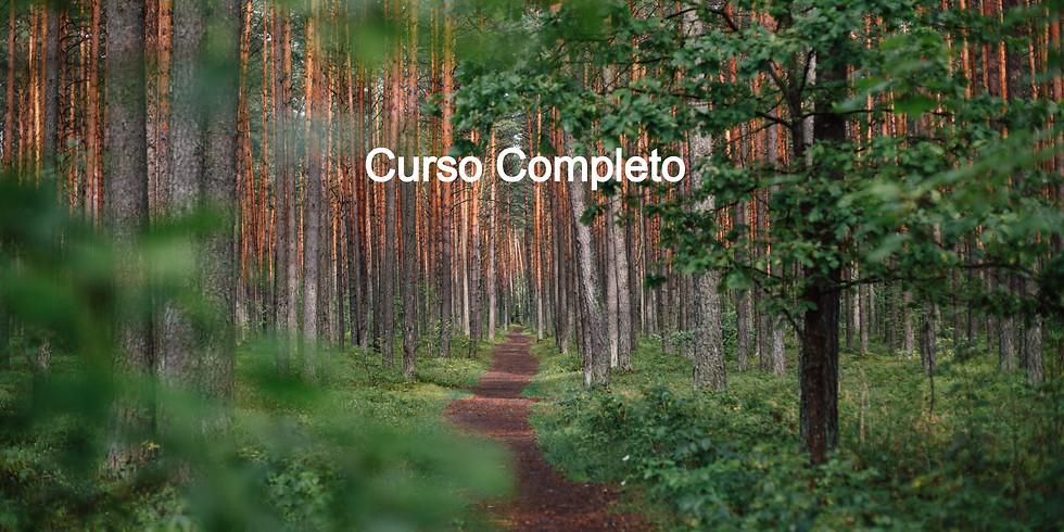 """Curso """"Recuperando la intuición ecológica"""" - Noviembre 2020"""
