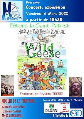 WILD GEESE 3 - Copie.jpg