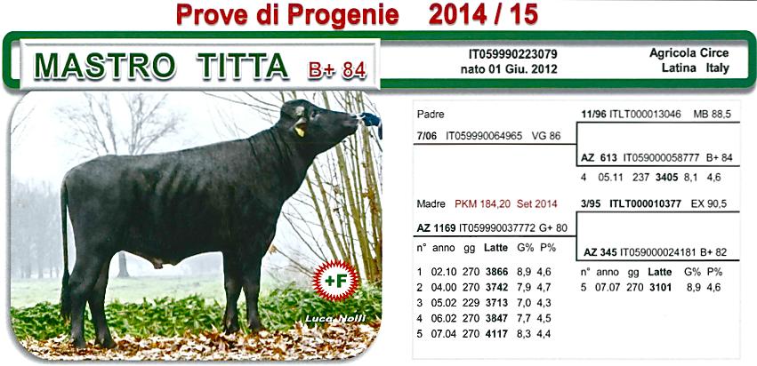Mastro Titta.png
