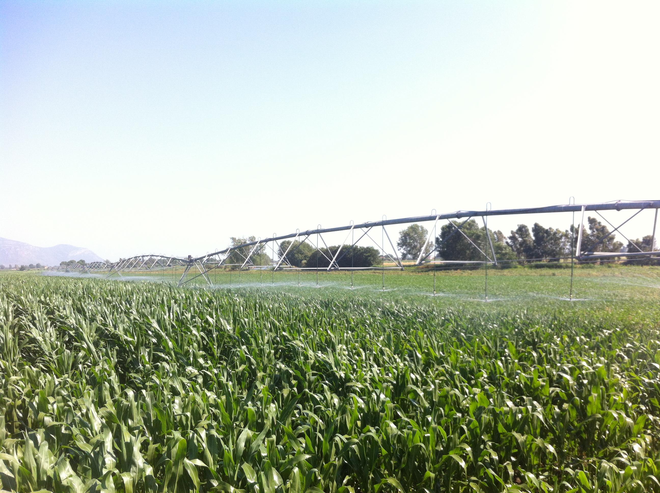 Irrigazione ad ala pivot