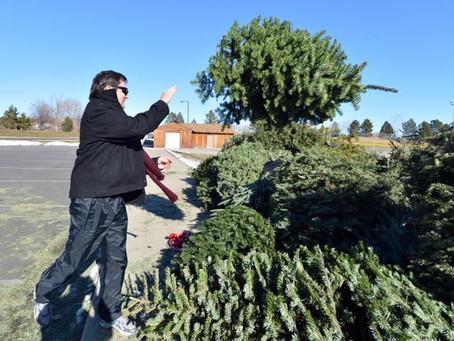 Christmas Tree and Leaf Pickup