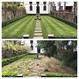 scs garden.jpg