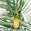 plantes publicitaires personnalisable baobab bonzai objets publicitaire écolo