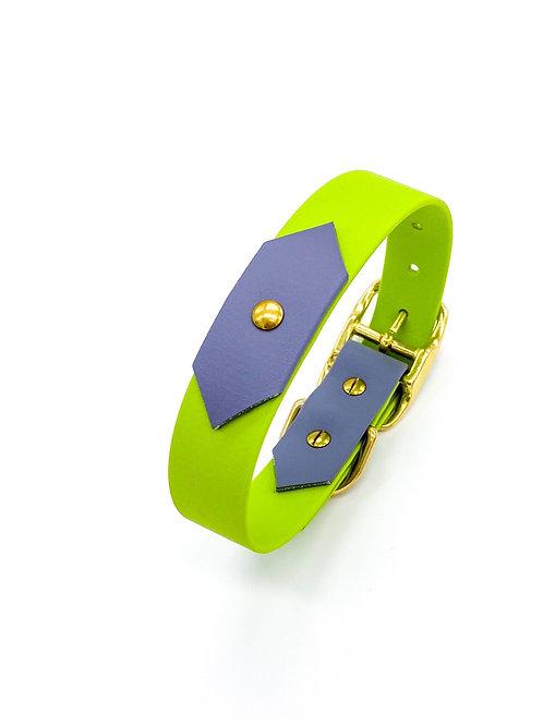 "2,5cm Halsband ""colourful Biothane kiwi/grau"" Halsumfang: 30-38 cm"