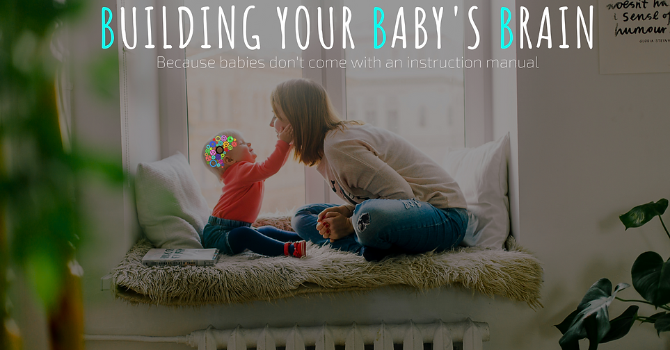 Building your baby's brain.png