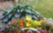 HOSTAS AND FLOWERS AROUND FOUNTAIN.PNG