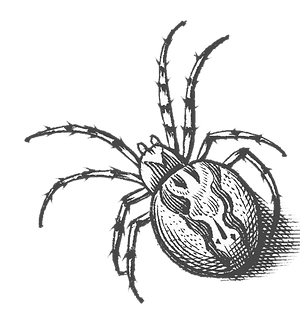 spidergret.png
