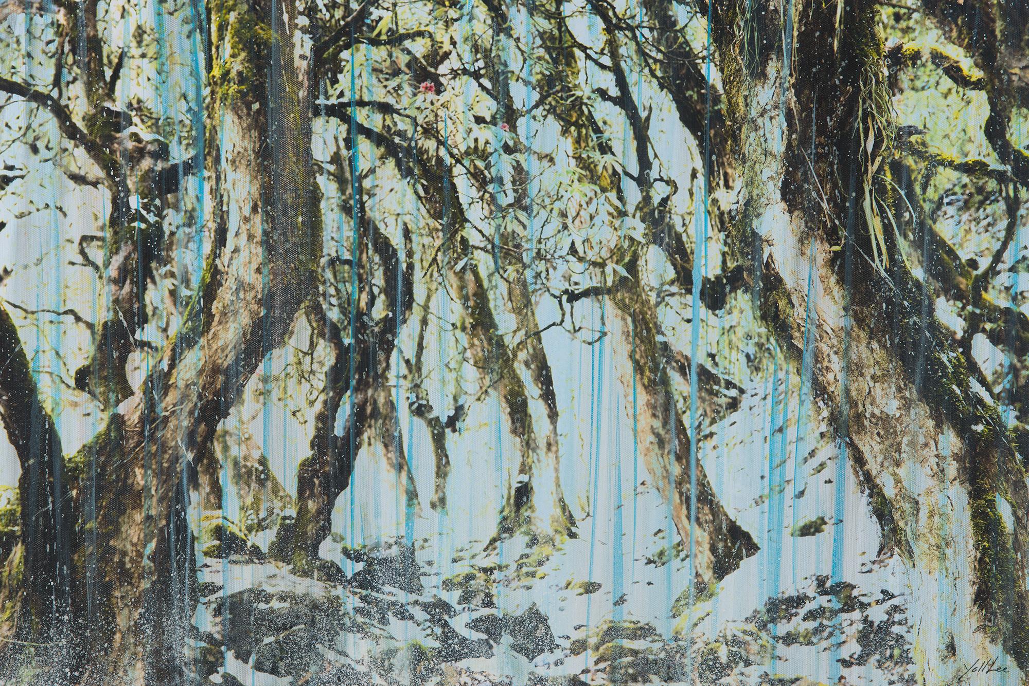랄리구라스숲에-비가-내리다