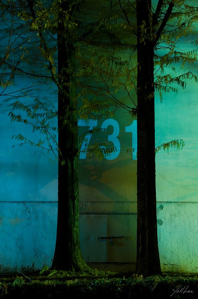 Number_731
