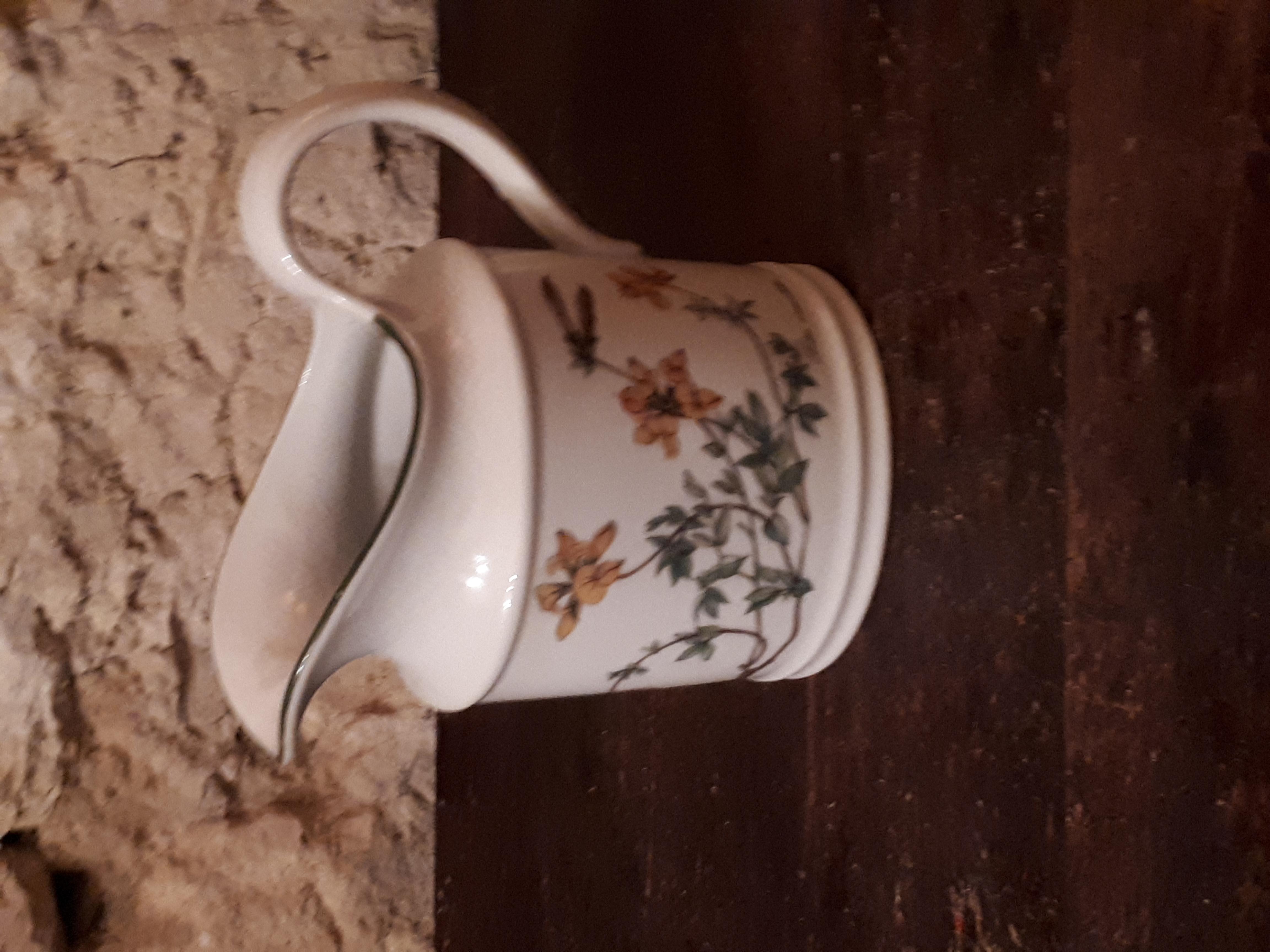 Pot à lait genêt moyen