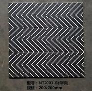 NT2001