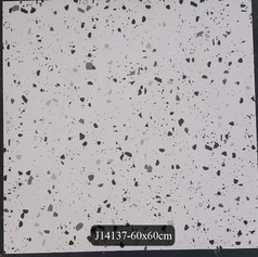 J14137