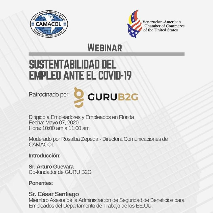 Webinar: Sustentabilidad del Empleo ante el COVID-19