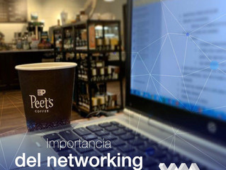 Importancia del networking en emprededores