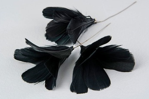 Blomfjädrar svart 12-pack
