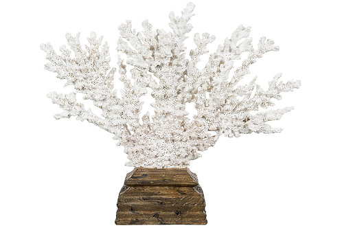 Korall (polystone)