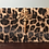 Thumbnail: Box Leopard