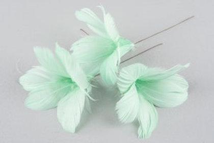 Blomfjädrar ljusturkos 12-pack