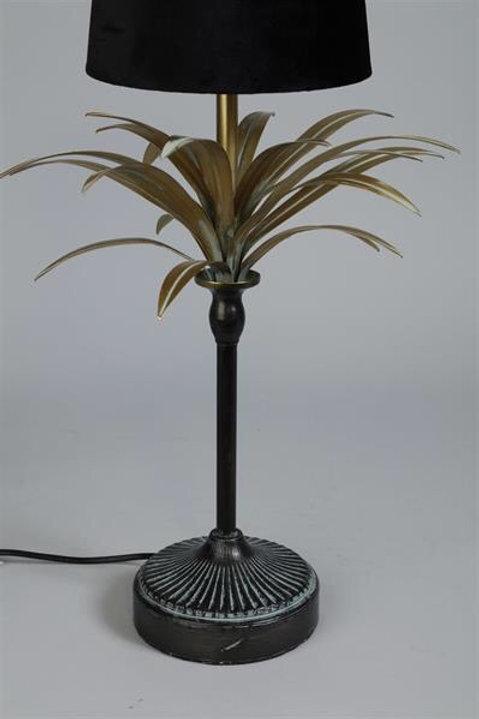 Lampfot Palm
