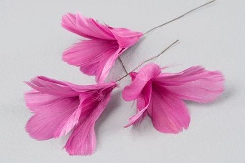 Blomfjädrar Cerise 12-pack