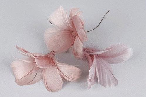 Blomfjädrar gammelrosa 12-pack