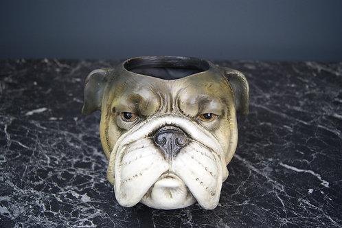 Kruka Hund