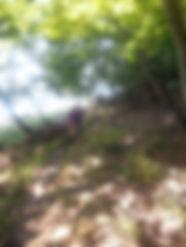 Seksualitet og selvudvikling, ø-lejr, arbejde med kærlighed og seksualitet, finde ny kæreste, musik og bevægelse og seksualitet, gruppe diskussione rom seksualitet og intimitet, Græsrodsgården og kursus i seksualitet, ø-lejr med seksualitets kursus, nærværs øvelser og seksualitet, mindfulness og seksualitet, mindfulness instruktør og sexolog Rikke Thor