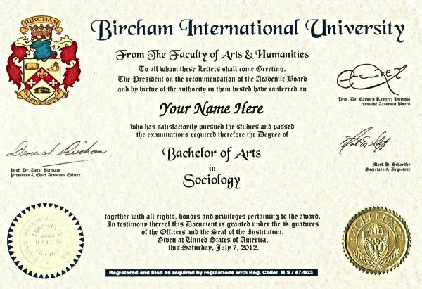 Diploma-Bachelor.jpg