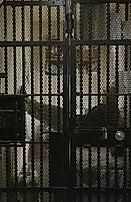 death row cell.jpg