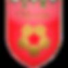 klubnaya_liga (1).png