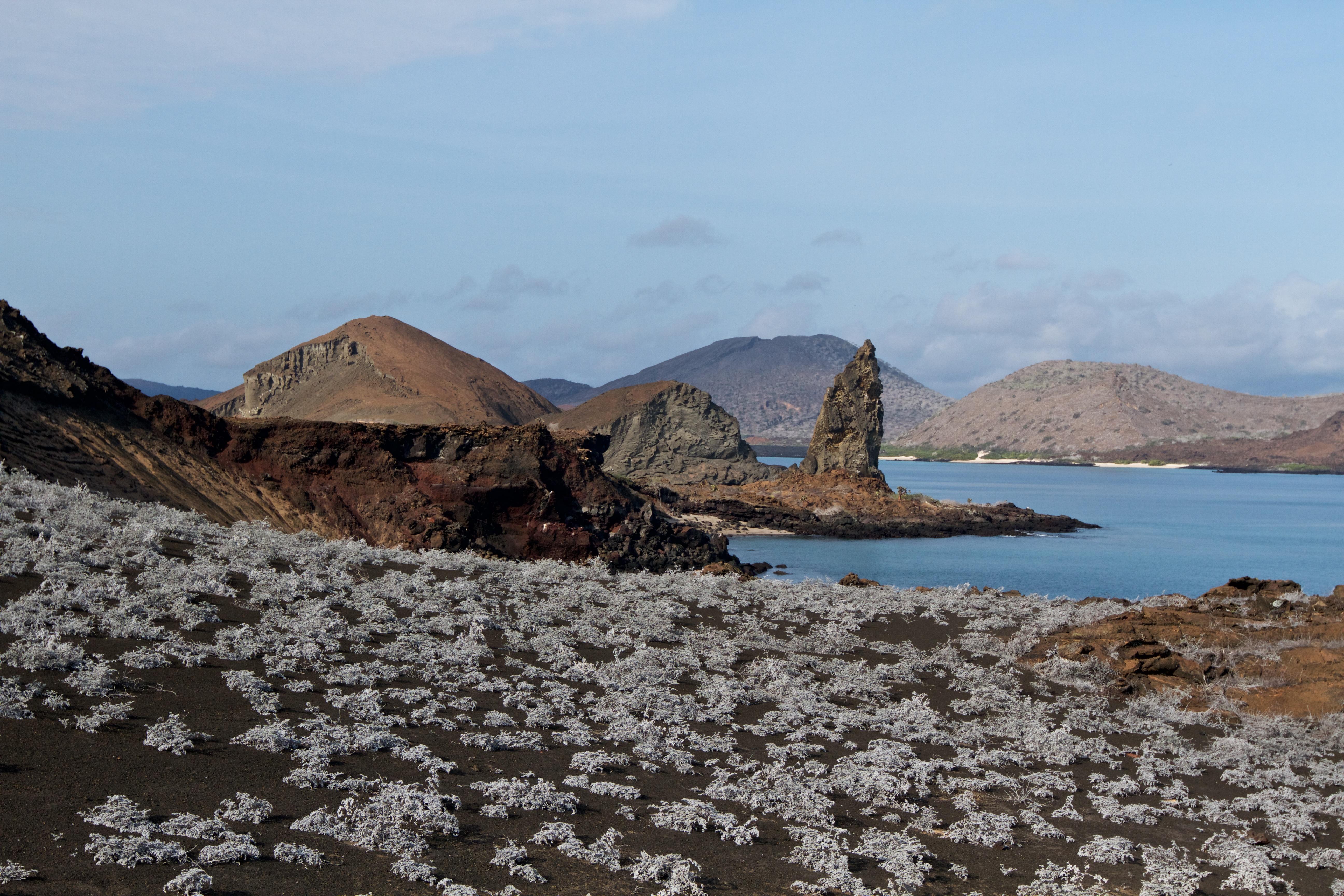 Galapagos haven