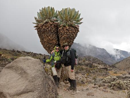 Conquering Kilimanjaro - Day 4