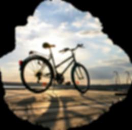location vélo marie-galante, location scooter marie-galante, location vélo électrique marie-galante