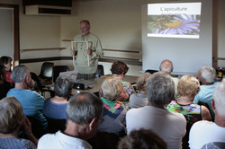Réunion apiculture