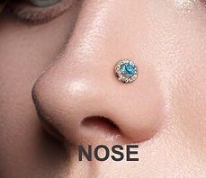 Mother-Jewel-nose.jpg