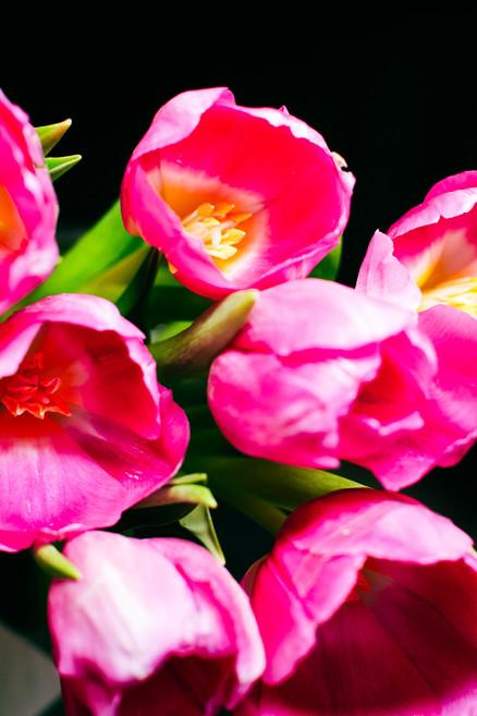 20-04-25 - Aroma de Flor-3.jpg