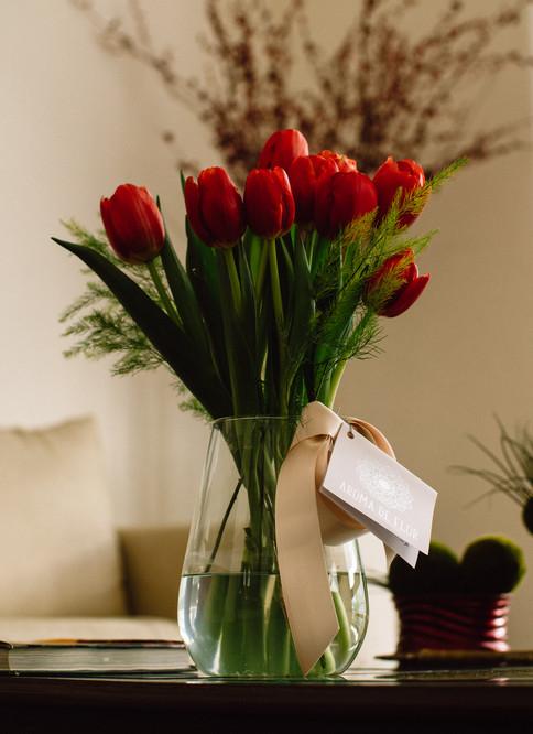 20-02-15 - Tulipanes-1.jpg