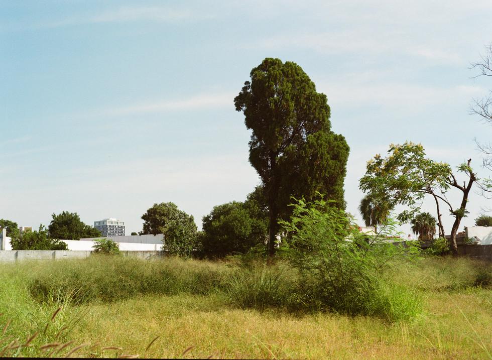 URBAN LANDSCAPES (UNTITLED)