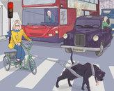 dog buss.jpg