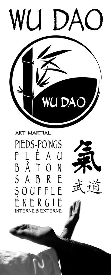 WUDAO_rollup-affiche_WD.jpg