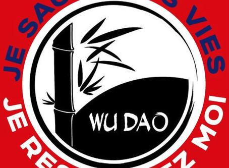 Suspension du Wu Dao