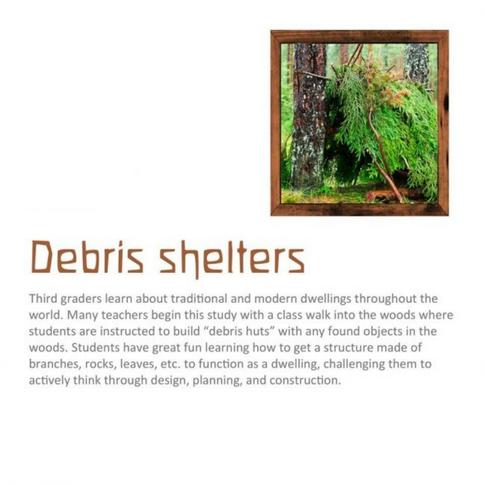 debris shelters