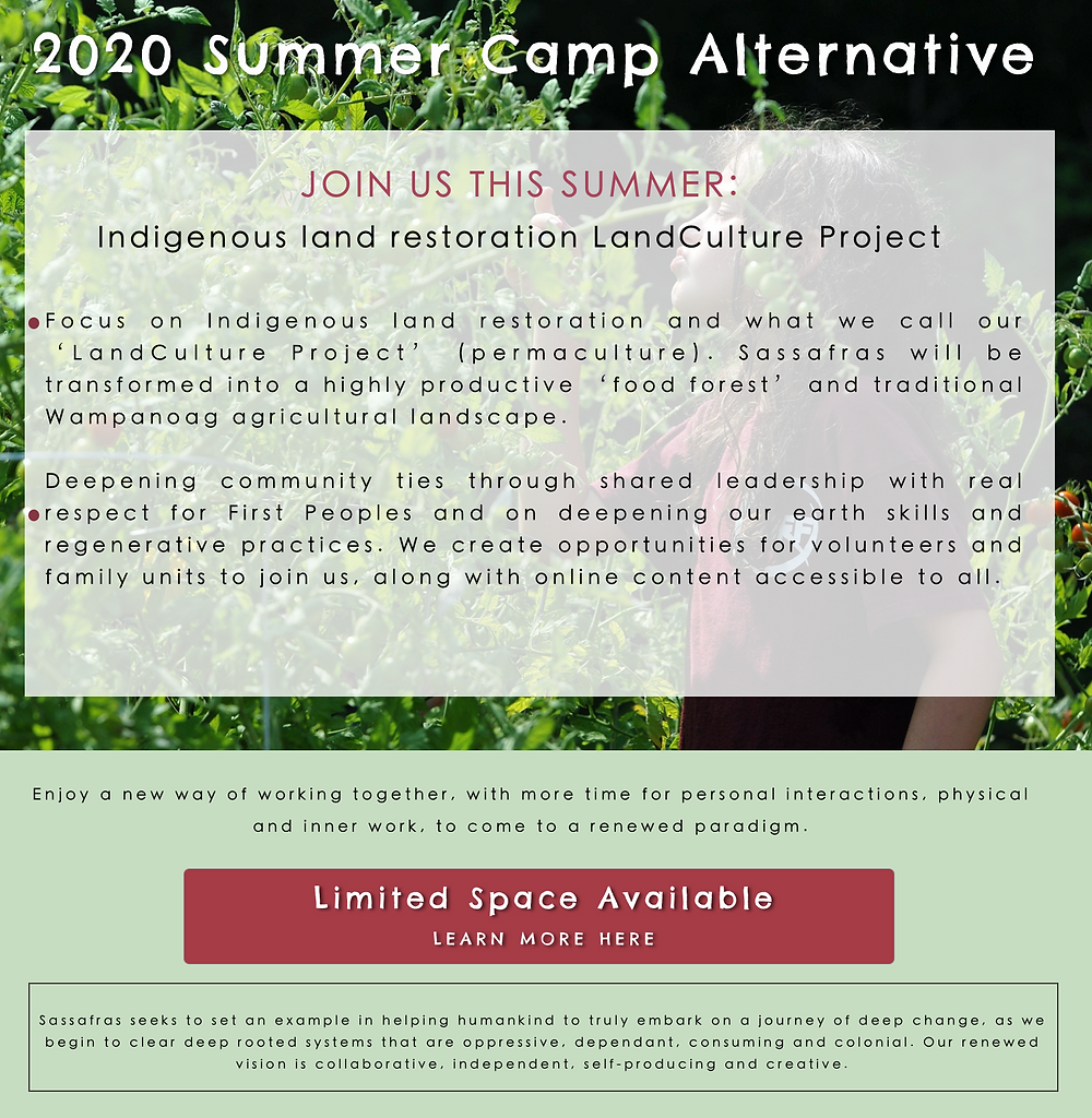 2020 SUMMER CAMP ALTERNATIVE Martha's Vineyard