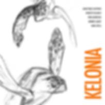 Kelonia Cover